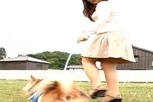 犬の散歩中ご近所の奥さんに手コキしてもらった話